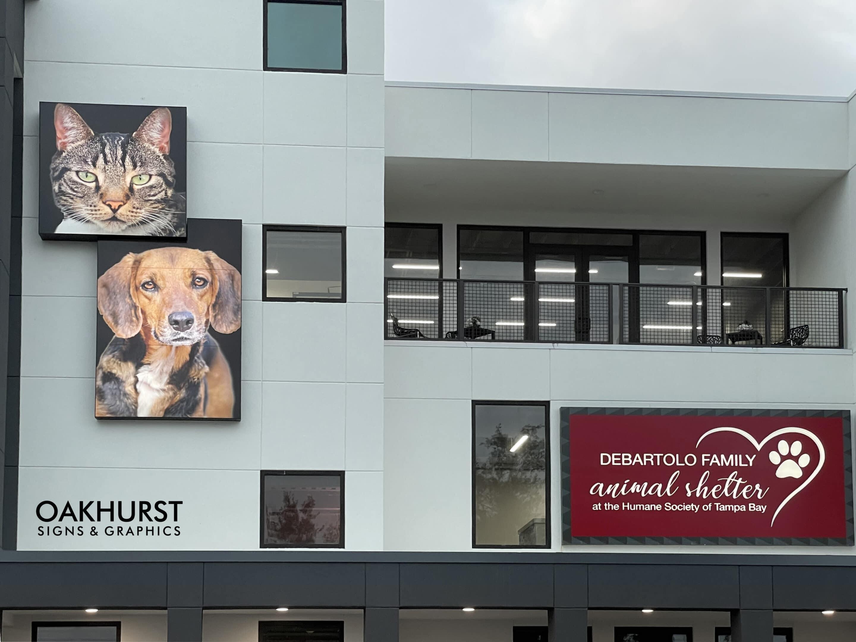 Humane Society of Tampa Bay building exterior
