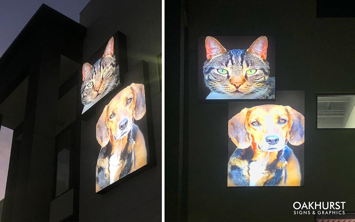 Decorative pet signage of building exterior